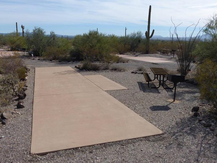 Pull-thru campsite with picnic table and grill, surrounded by cactus and desert vegetation.Site 156