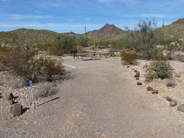 Pull-in parking tent camping site with picnic table and grill. Surrounded by cactus and desert vegetation.Site 175