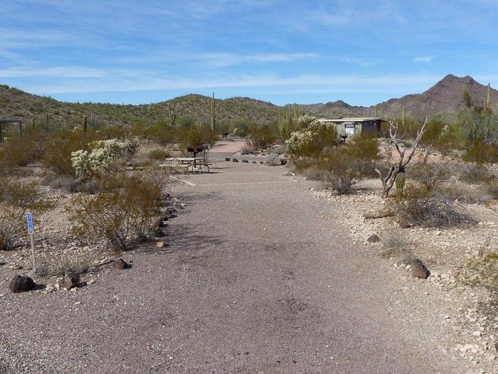 Pull-in parking tent camping site with picnic table and grill. Surrounded by cactus and desert vegetation.Site 179