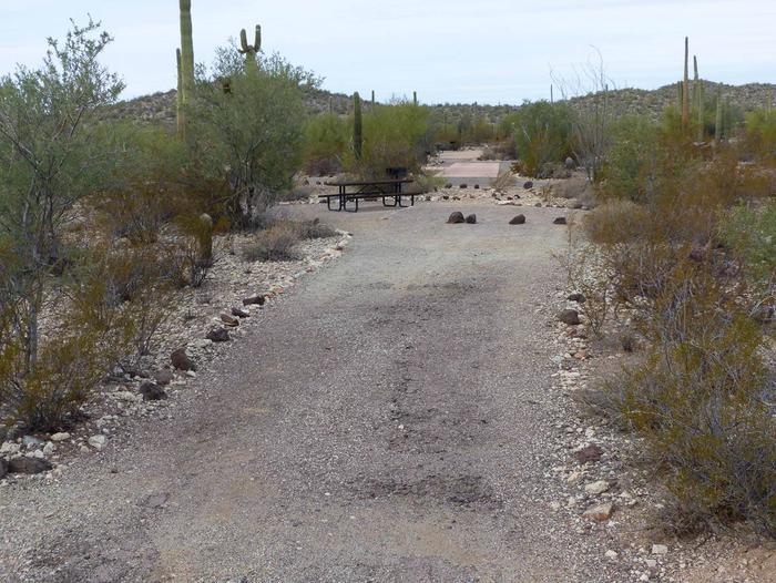 Site 191