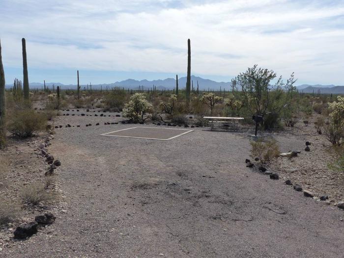 Site 194