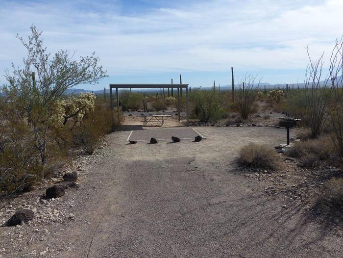 Pull-in parking tent camping site with sunshade, picnic table and grill. Surrounded by cactus and desert vegetation.Site 203