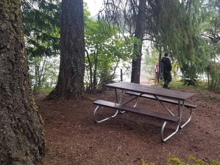 Fourmile Site #24Fourmile Boat-in Campsite #24
