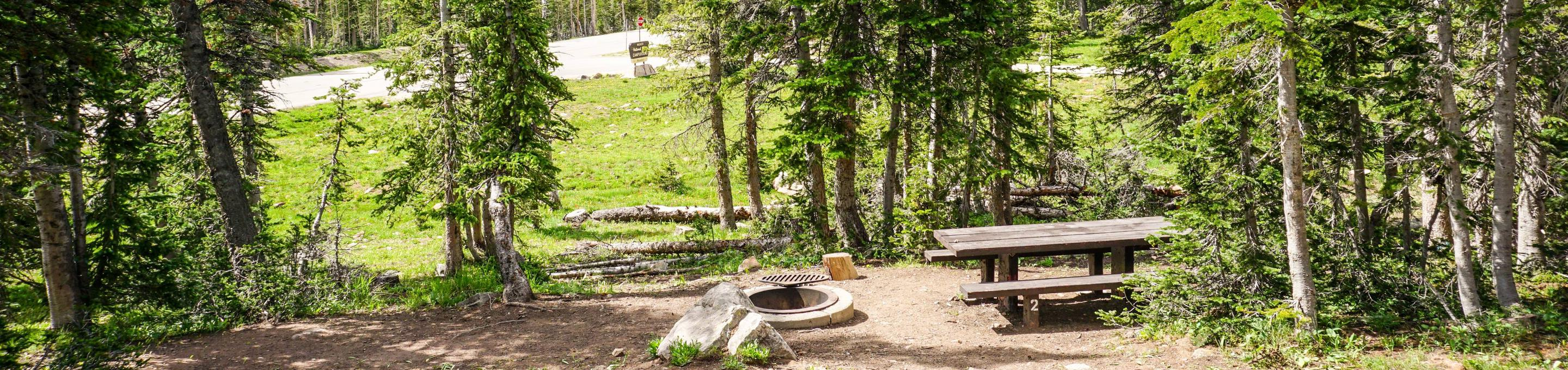 Moosehorn Campground - 002