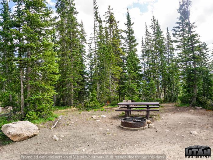Moosehorn Campground - 004