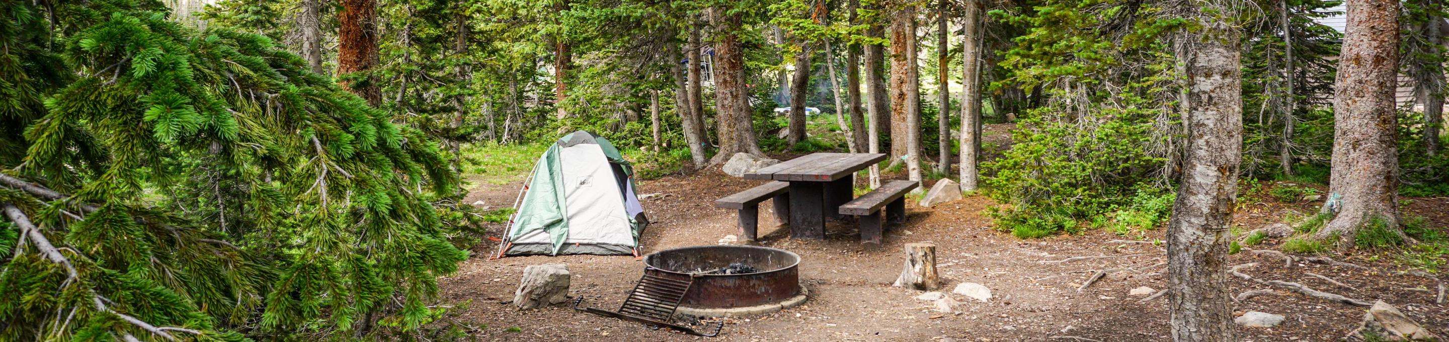 Moosehorn Campground - 005