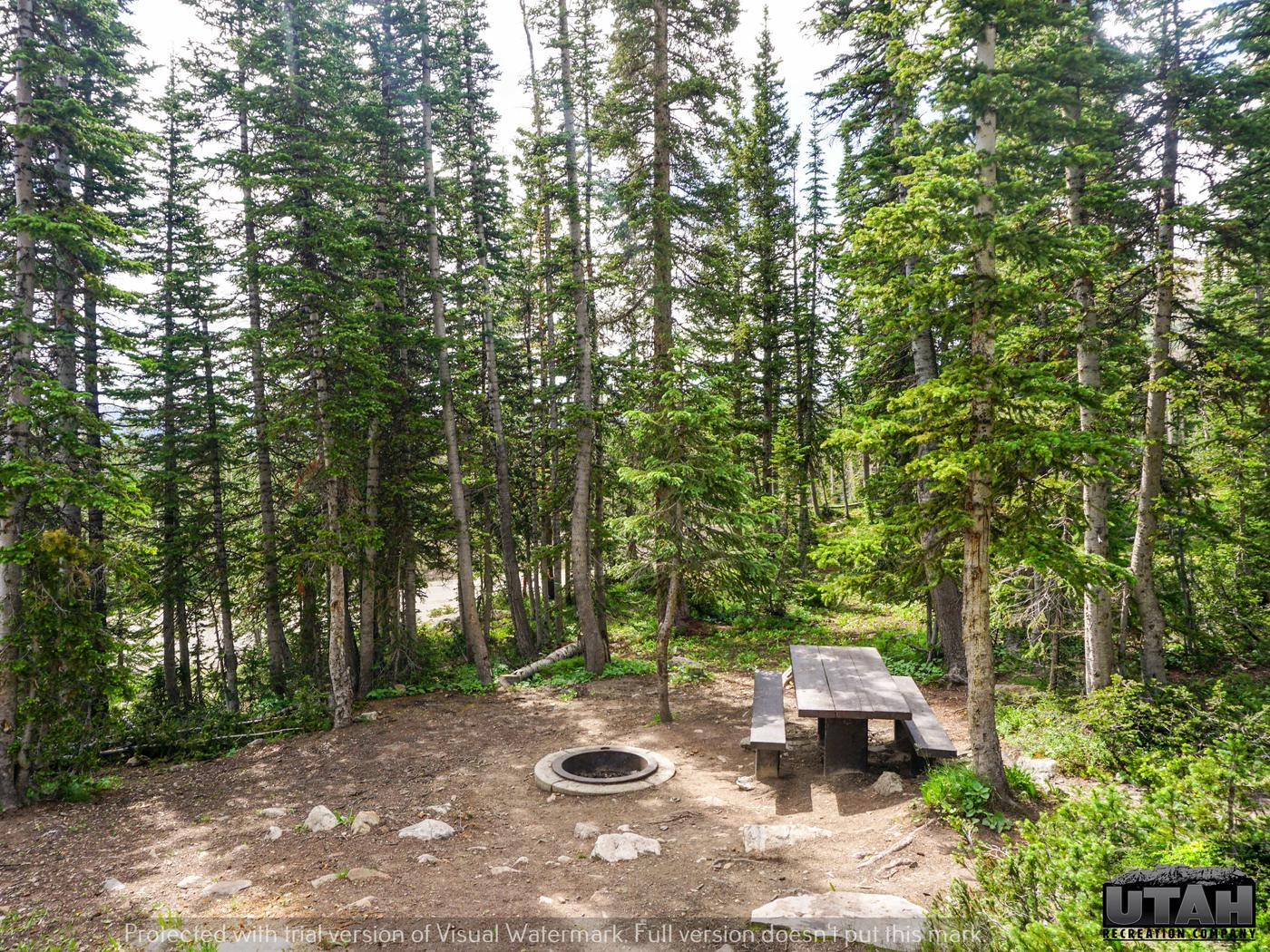 Moosehorn Campground - 006