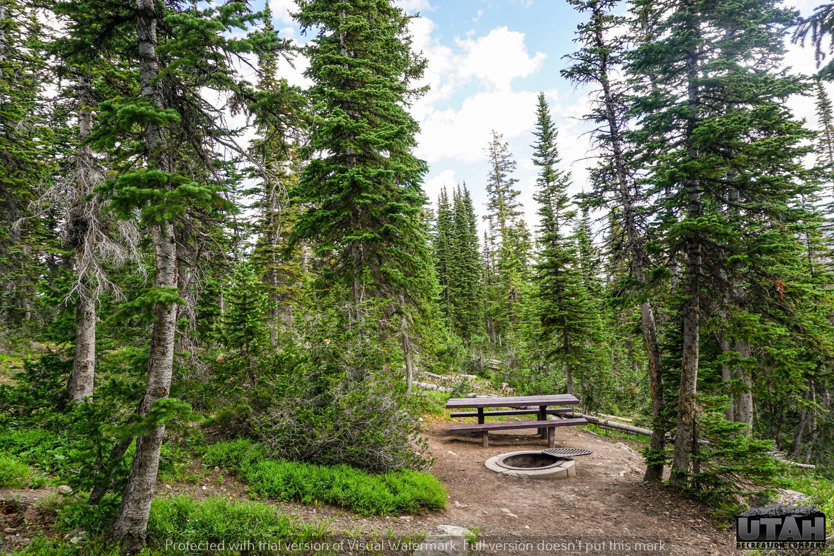 Moosehorn Campground - 010
