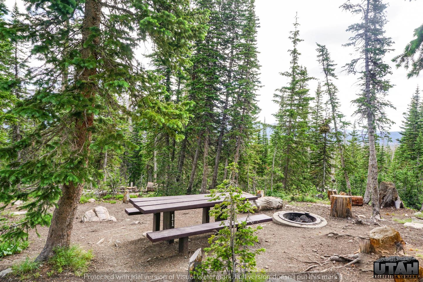 Moosehorn Campground - 011