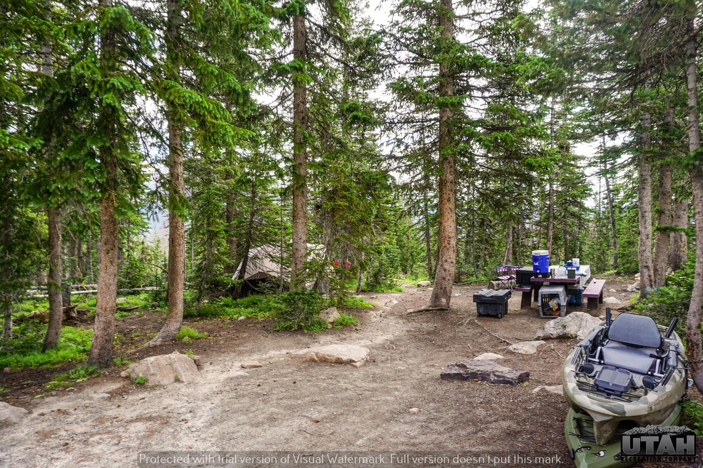 Moosehorn Campground - 012