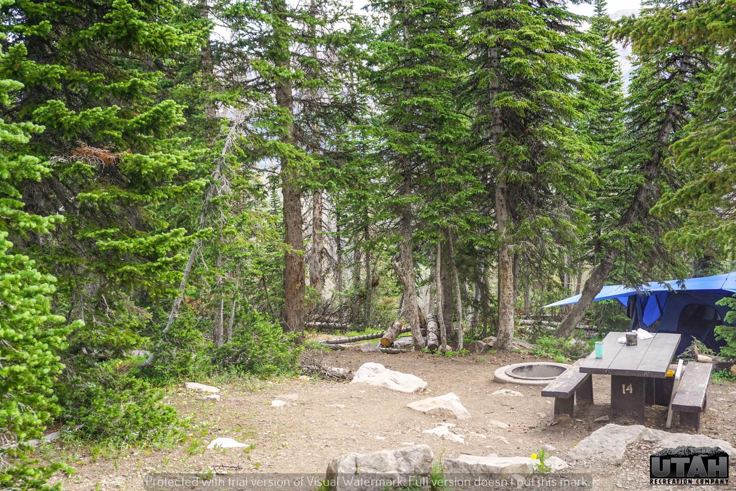 Moosehorn Campground - 014