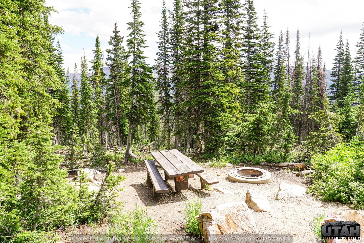 Moosehorn Campground - 015
