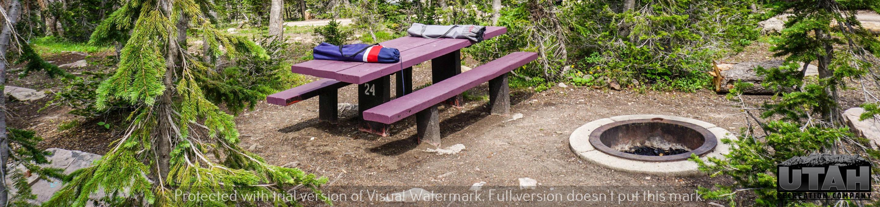 Moosehorn Campground - 024