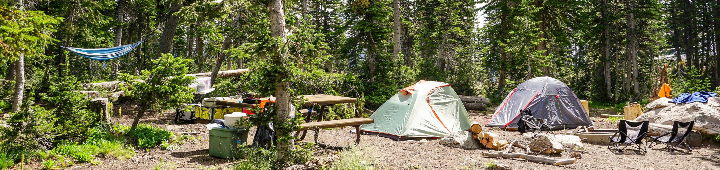 Moosehorn Campground - 028