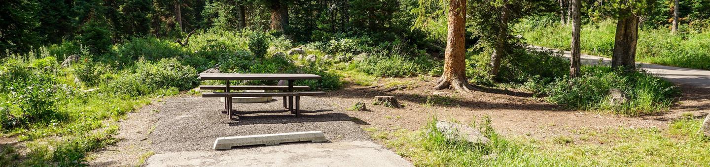 Ledgefork Campground A - 003