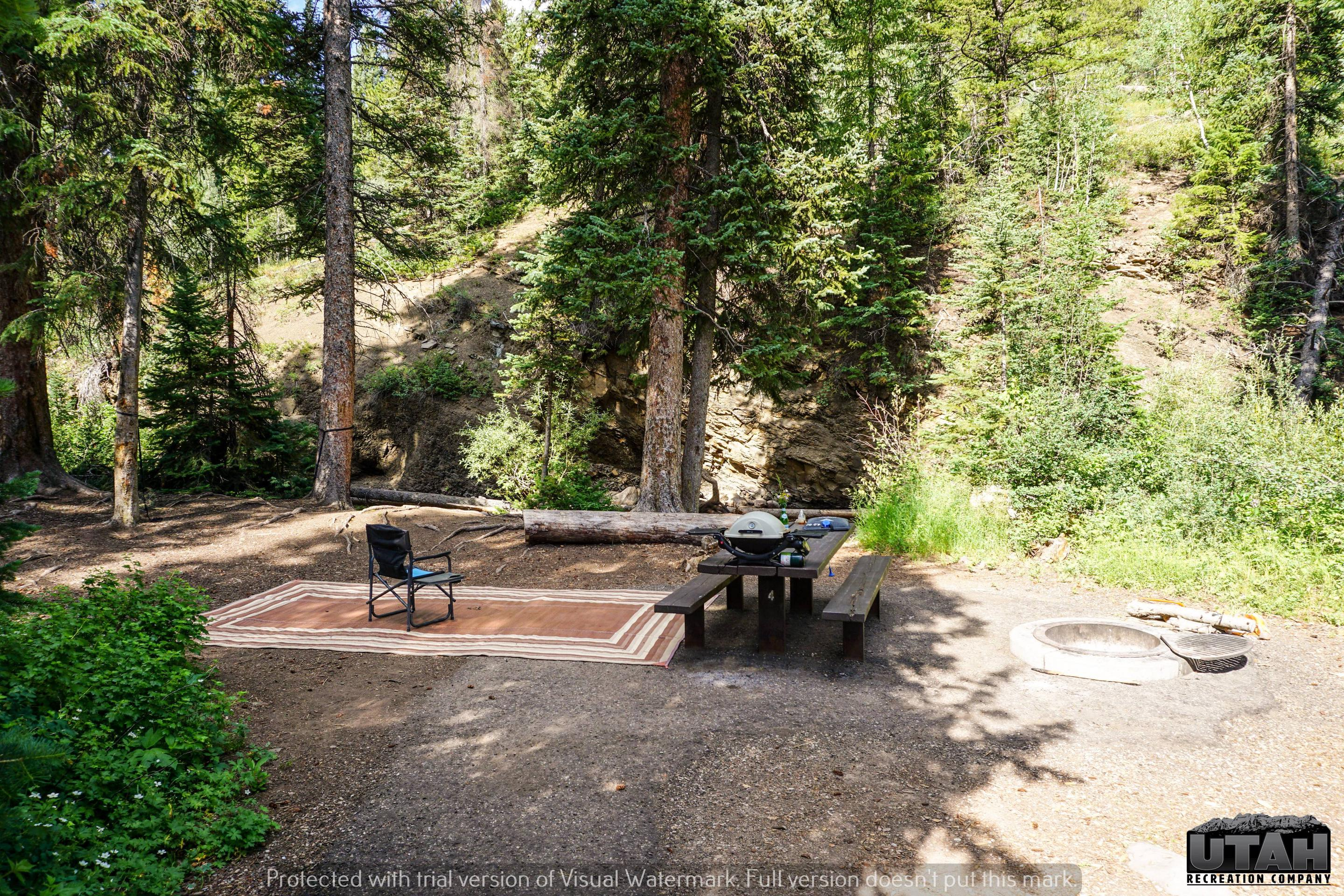 Ledgefork Campground A - 004