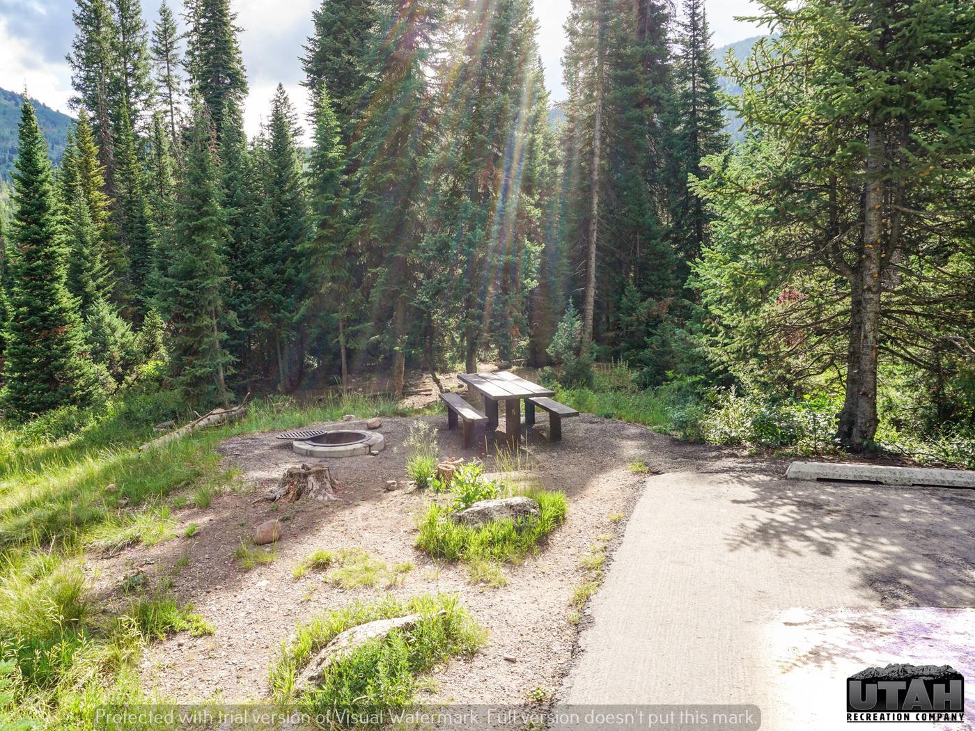 Ledgefork Campground A - 005