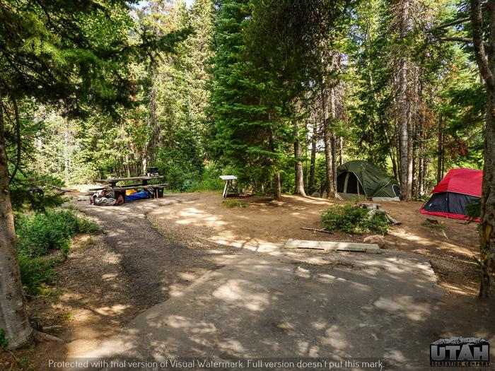 Ledgefork Campground A - 019