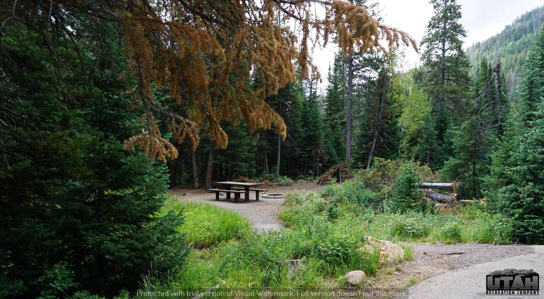 Ledgefork Campground A - 026