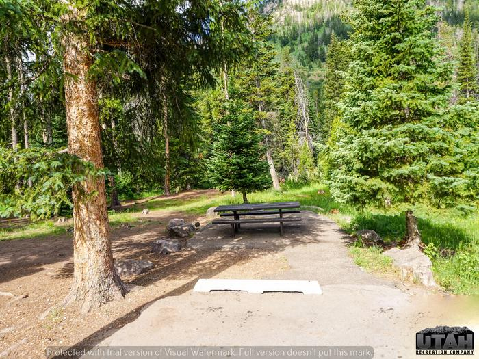 Ledgefork Campground B - 041