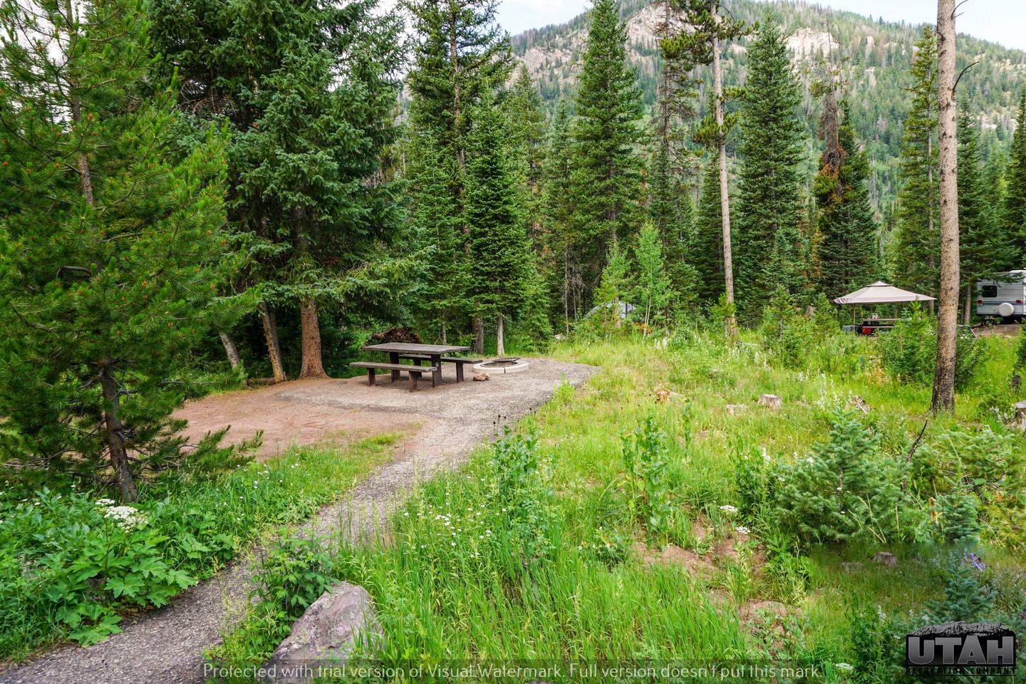 Ledgefork Campground B - 051