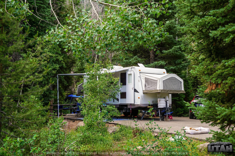 Ledgefork Campground B - 053