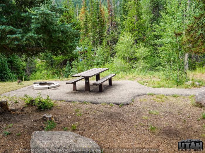 Ledgefork Campground B - 056