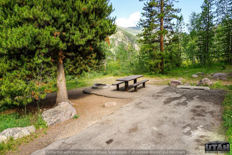 Ledgefork Campground B - 064