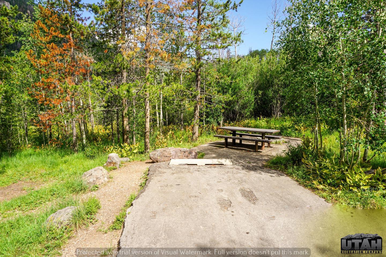 Ledgefork Campground B - 065