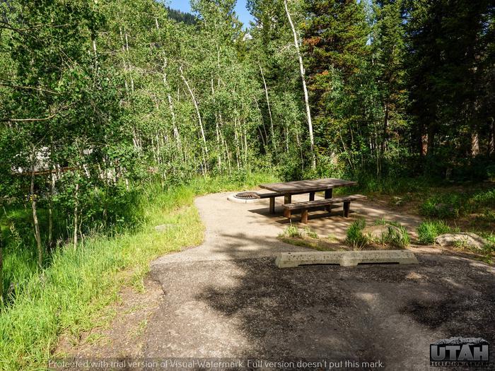Ledgefork Campground B - 068
