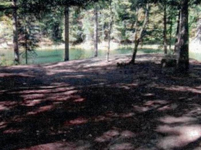 Cooke PondSite 69W