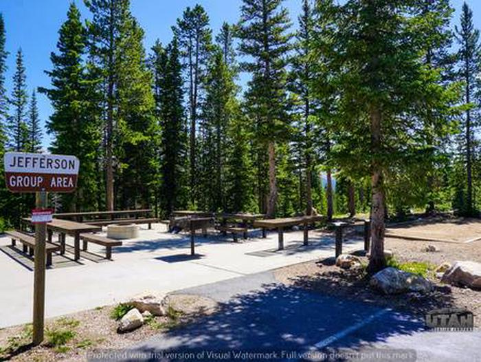 Site: Jeff, Loop: Washington Lake