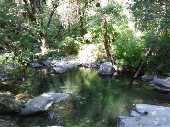 Swimming Hole, Fiddle Creek