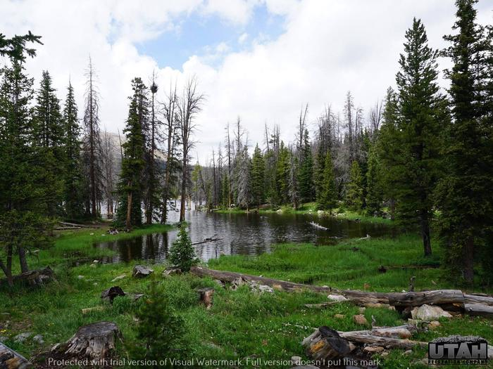 Preview photo of Trial Lake Campground