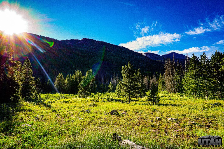Sulphur Campground