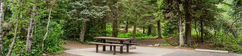 Site: 060 Loop: Spike Camp, Area B