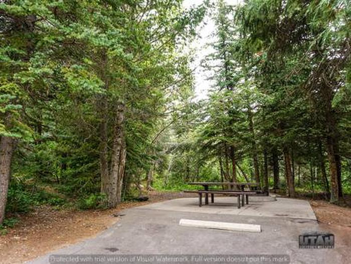 Site: 061 Loop: Spike Camp, Area B