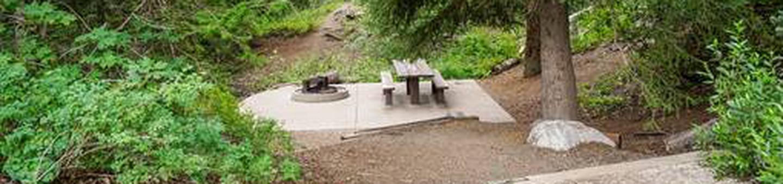 Site: 062 Loop: Spike Camp, Area B