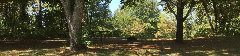 Jackrabbit Campground Site 61