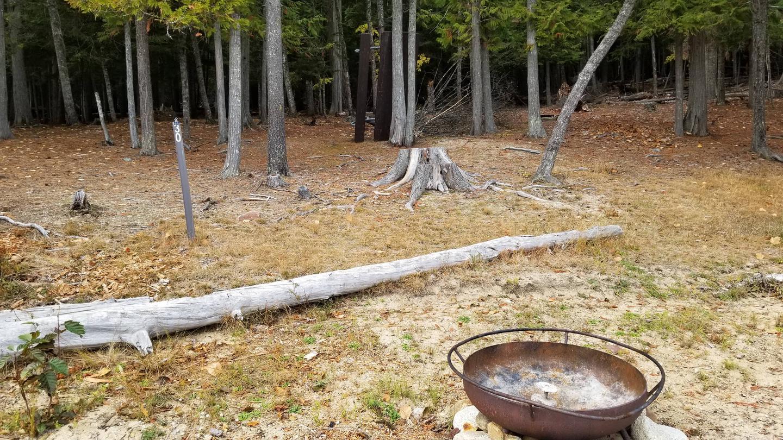 Three Pines Site #30Three Pines Boat-in Campsite #30