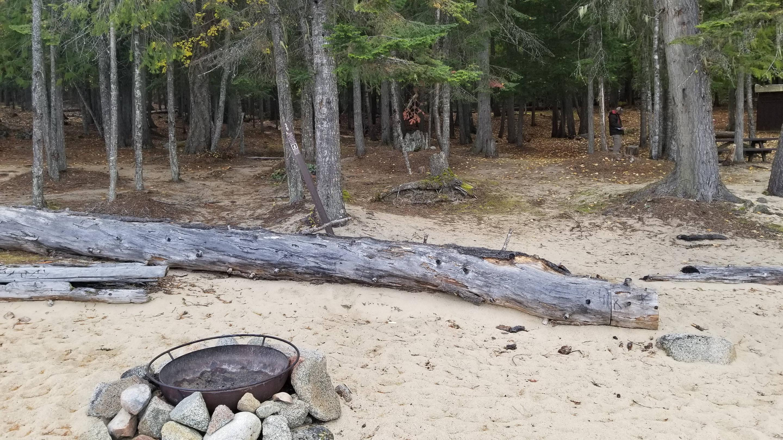 Cottonwood Site #36Cottonwood Boat-in Campsite #36