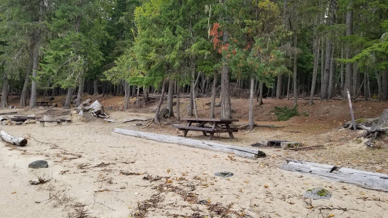 North Cove Site #49North Cove Boat-in Campsite #49