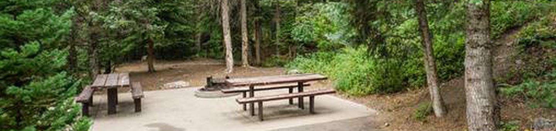 Site: 051 Loop: Spike Camp, Area B