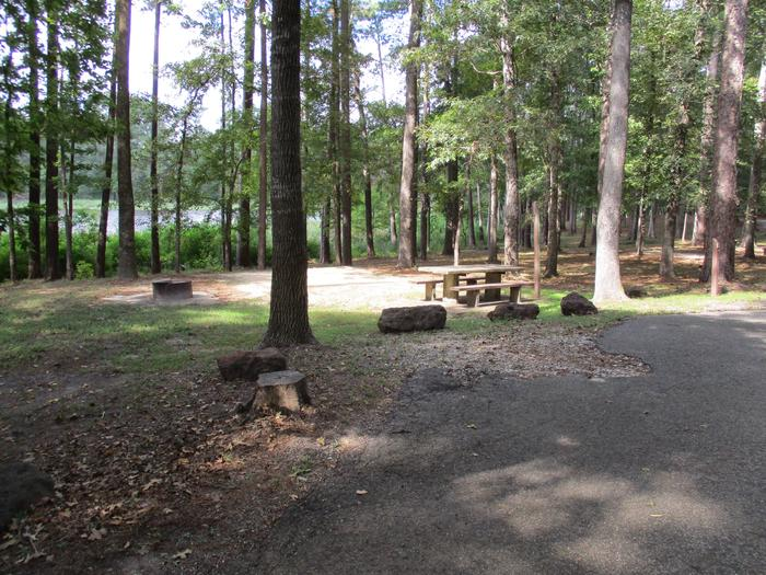 Road view of tent site #7.