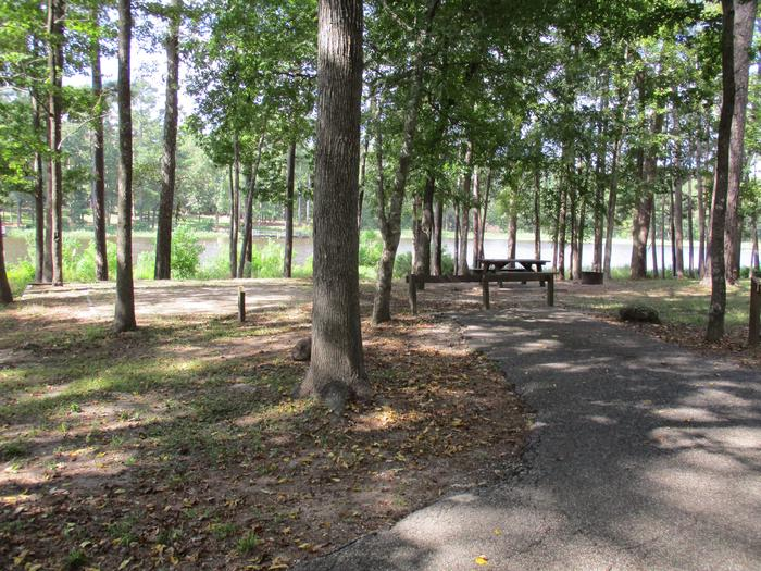 Road view of tent site #9