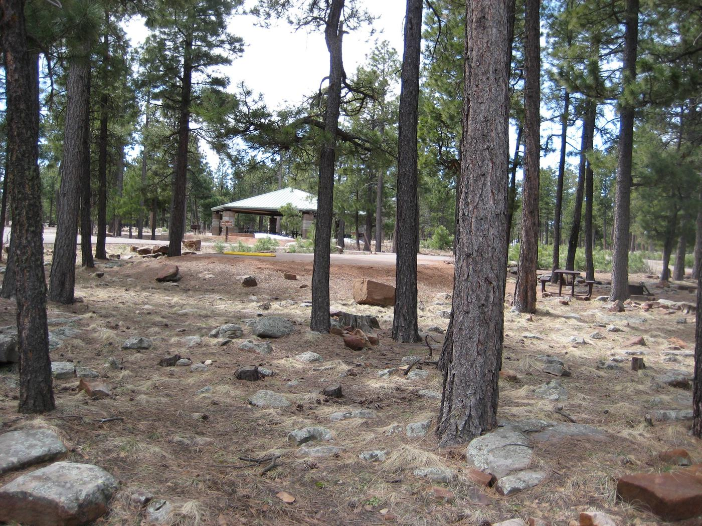 Crook Group CampgroundCrook Campground offers two group loops with Ramadas. Each loop can be reserved separately for groups up to 125 or both loops together for larger groups.