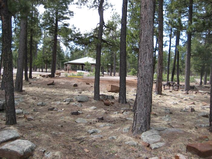 Preview photo of Crook Campground