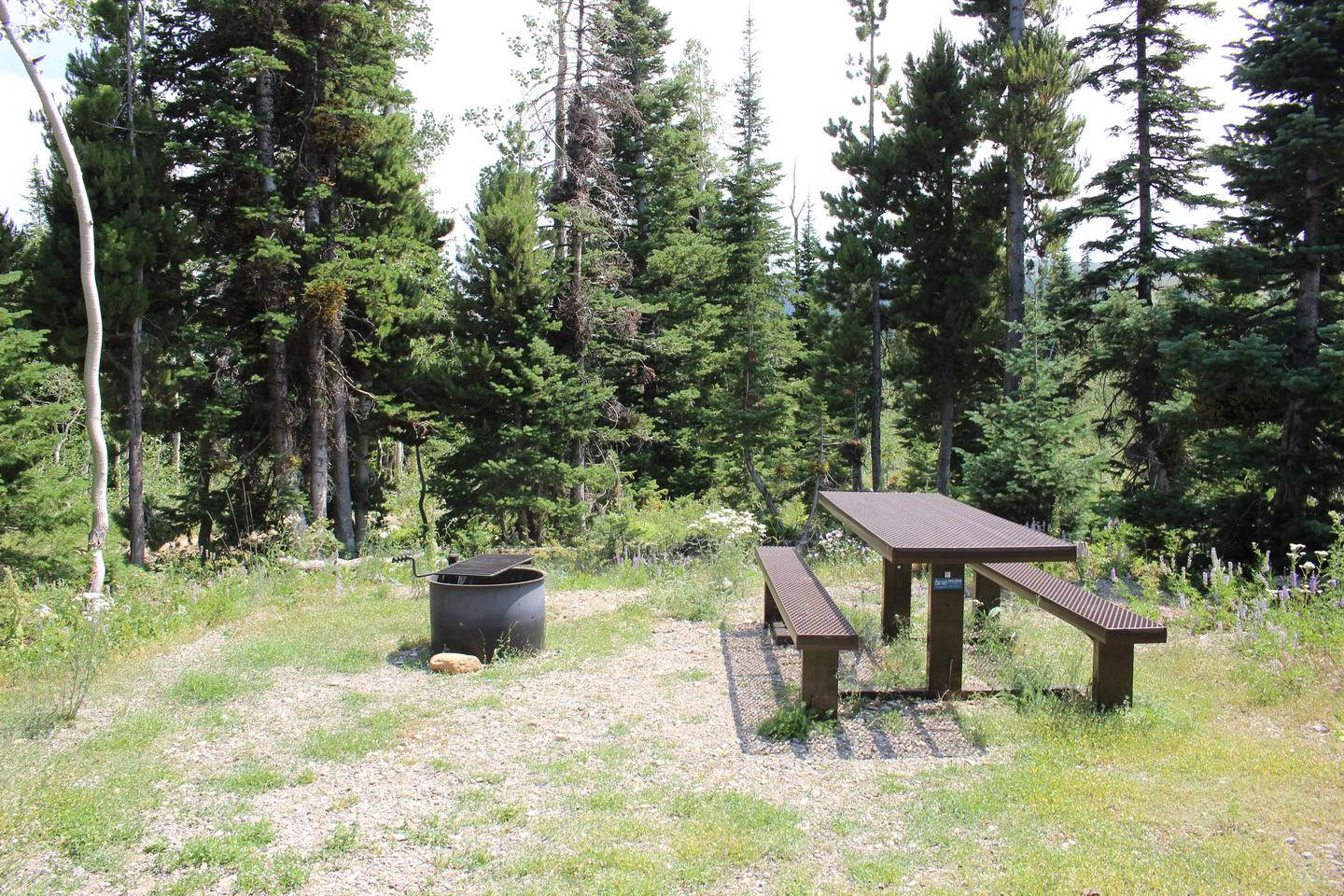 Site 11.Table And Fire Ring