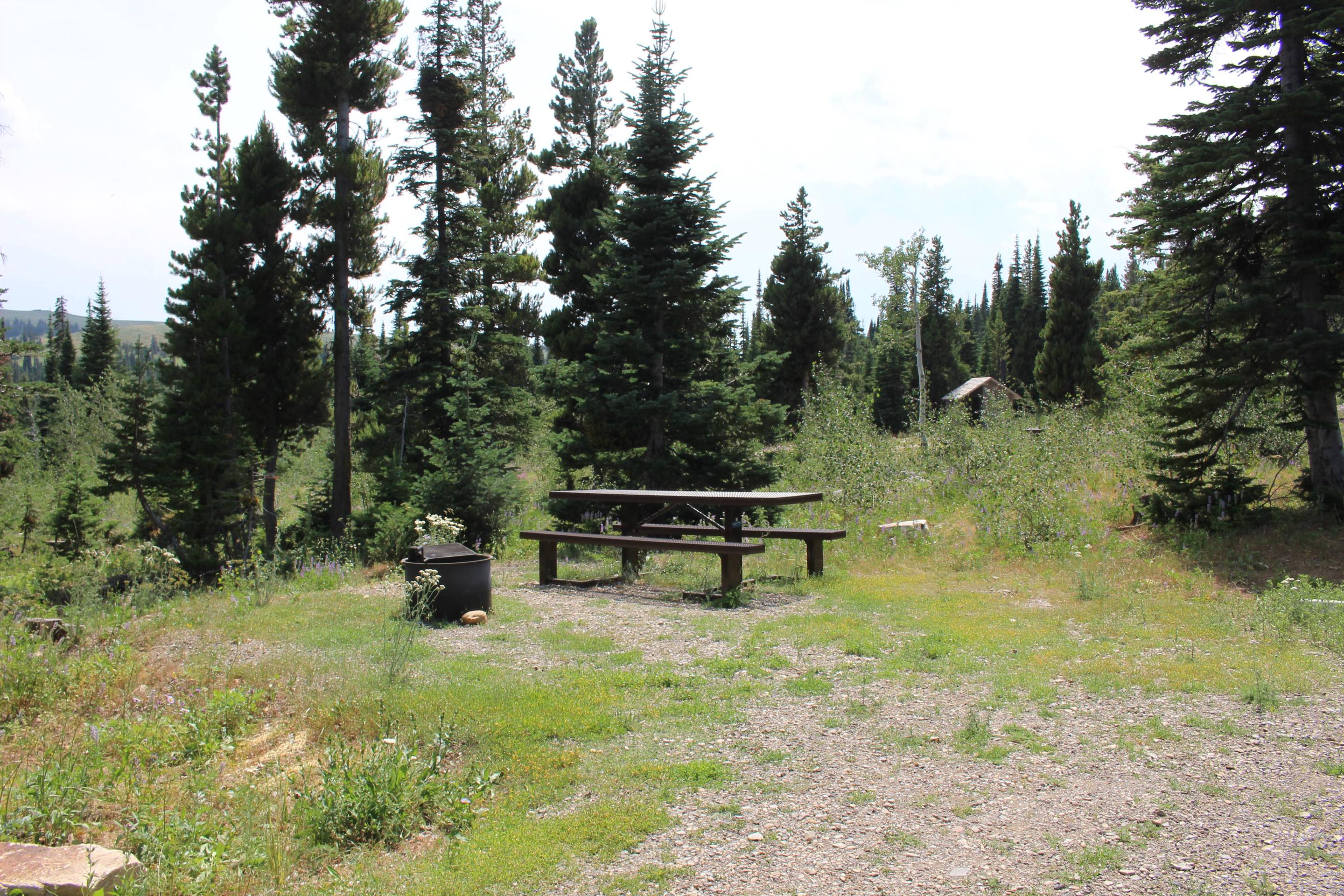Site 11Table And Fire Ring