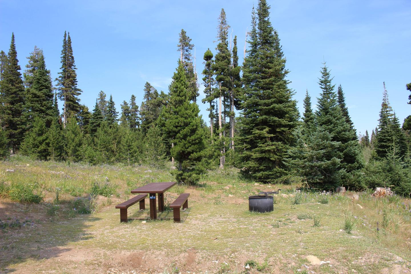 Site 17Picnic Table and Fire Ring